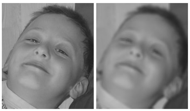 A focused image (left) and an unfocused image (right). The difference between the two images is different values of b