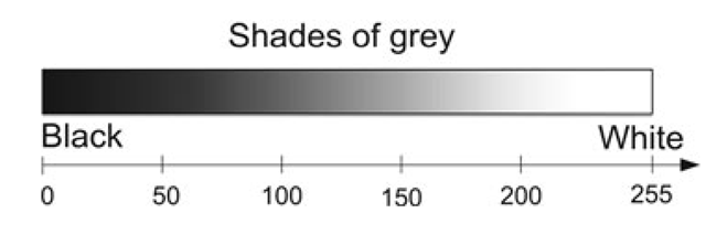 The relationship between the intensity values and the different shades of gray
