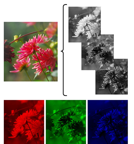 A color image consisting of three images; red, green and blue