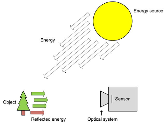 Overview of the typical image acquisition process, with the sun as light source, a tree as object and a digital camera to capture the image. An analog camera would use a film where the digital camera uses a sensor.