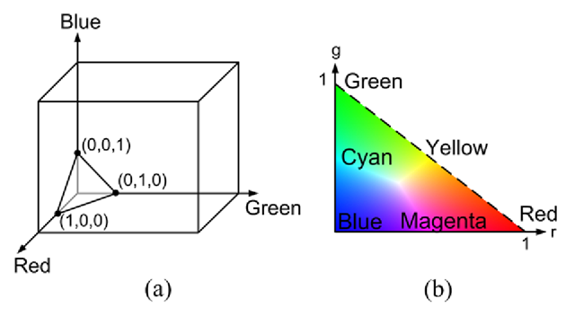 (a) The triangle where all color vectors pass through. The value of a point on the triangle is defined using normalized RGB coordinates. (b) The chromaticity plane