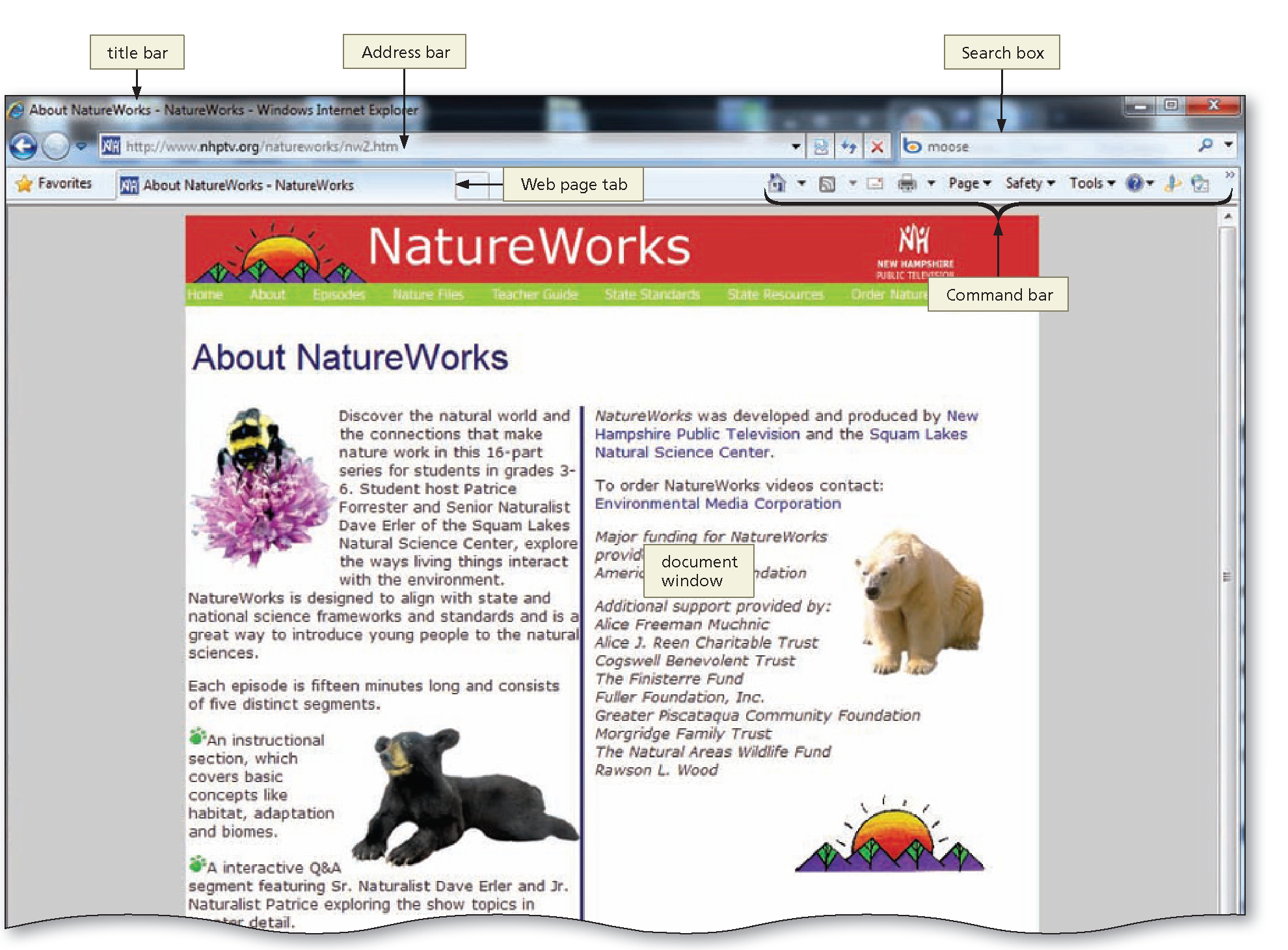 Contents of a web page