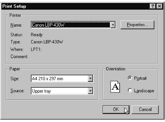 The Print Setup dialog box displays the name of the default printer and other values retrieved from the Microsoft Windows environment.