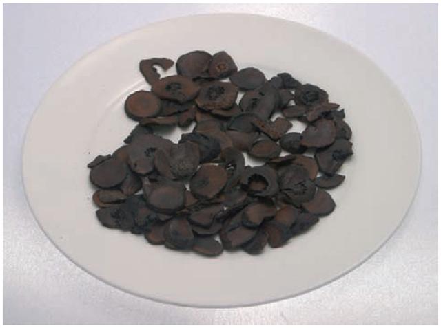 Zhishi (Citrus aurantium)