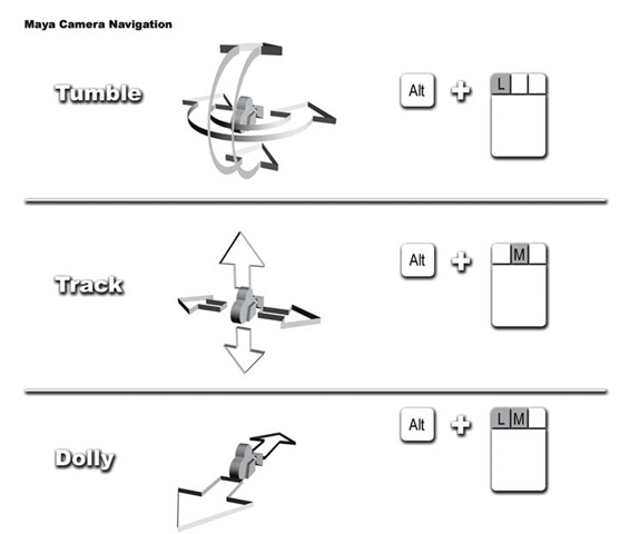 Camera tools Transformation Tools