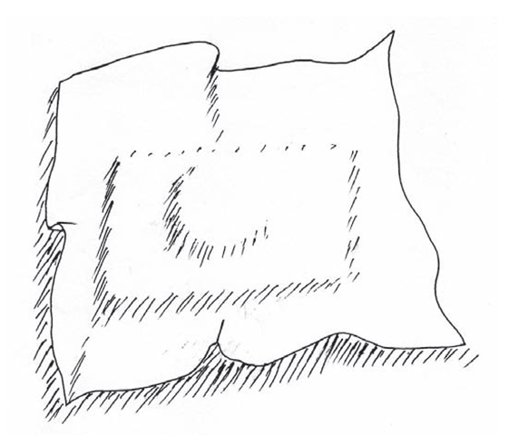 Depiction of the idea of an attentional shroud wrapping an object, here a camera. The information in the configuration of the shroud conveys the concept of the object shape in a coarse surface representation. The attentional shroud is conceived as a self-organizing manifold drawn to features of the object shape defined by depth cue representations somewhere in the cortex.