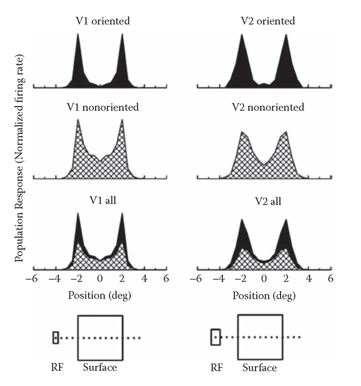 Response profiles across the representation of a square of uniform color in the macaque visual cortex. The plots show the averaged population responses for orientation-selective cells (top), nonorientation-selective cells (below), and for the combined activity of both (bottom). (Left) area V1 (supragranular cells only); (right) area V2. The responses are plotted as a function of the receptive field position relative to the square, as depicted schematically at the bottom. The color and the orientation of the square were optimized for each cell. The combined responses (bottom plot) were calculated by weighting the groups according to their respective encounter frequencies and taking into account that the expected firing rates of oriented cells are only about 20% of their maximum firing rates, because a figure of a given orientation will stimulate most cells at nonoptimal orientation.