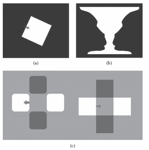 "Assignment of ""border ownership"" in perception. (a) Physically, the square is just a region of higher luminance surrounded by a region of lower luminance, but perceptually, it is an object, and the border between the regions is ""owned"" by the object. (b) A figure in which border ownership is ambiguous. (c) On the left, four squares are perceived as four different objects, whereas similar squares on the right are perceived as two crossbars, one of which appears transparent."