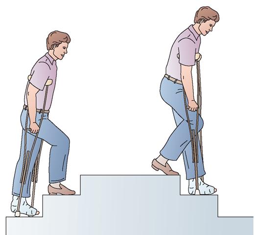 hip flexor muscle place