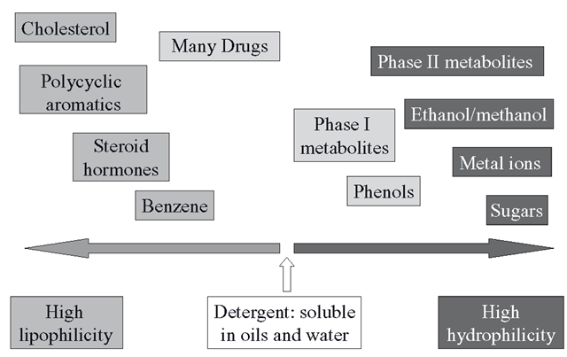 The lipophilicity (oil loving) and hydrophilicity (water loving) of various chemical entities that can be found in living organisms