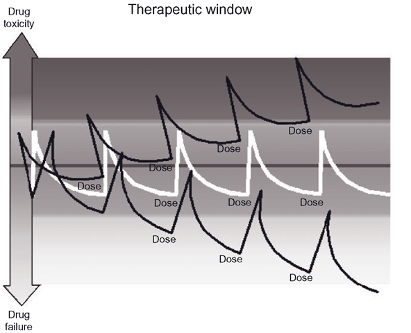 The 'therapeutic window', where drug concentrations should be maintained for adequate therapeutic effect, without either accumulation (drug toxicity) or disappearance (drug failure). Such is human variation that our personal therapeutic windows are effectively unique for every drug we take.