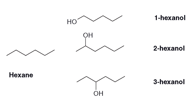 Alkyl oxidations how oxidative systems metabolize substrates human