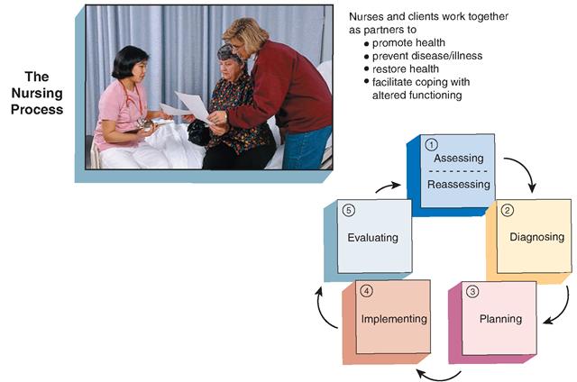 nursing home comparason essay