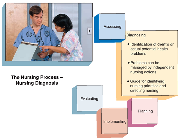 the assessment for nursing potential nursing Nurses' self-assessment of intermediate patient care skills, the difference between self-assessment and job demands for basic patient care skills, and nurses' overall satisfaction with their own nursing competencies were three significant predictors of overall satisfaction with nurses' own job performance (model a: r 2 =0608).